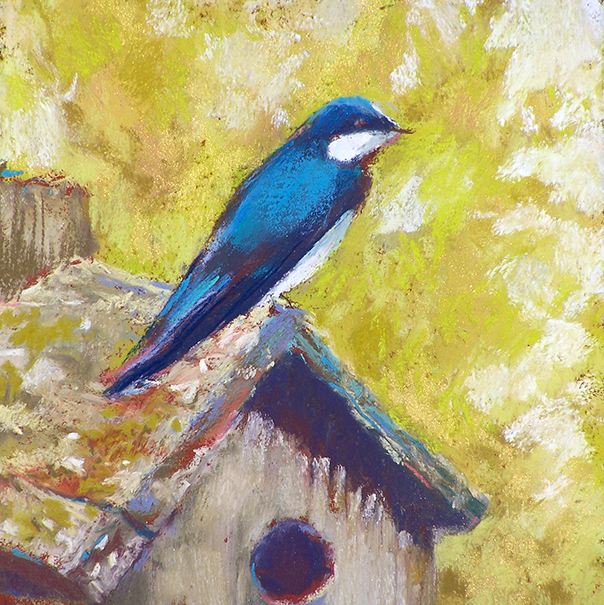 SLH-swallow on birdhouse-wb