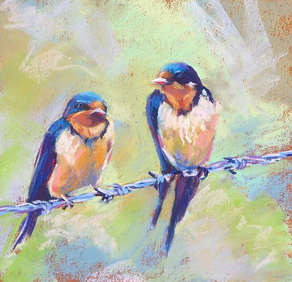 slh-swallows-wb