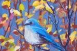 SLH-bluebird-wb