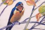 SLH-swallow-wb