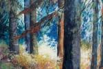 SLH-Lighting-the-way.odelltrees.wb_
