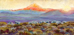 Late sun with sheep